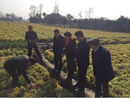 四川省农业厅领导一行莅临天地网(定位)(2)(1)1025