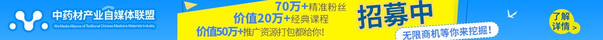 中药材产地自媒体首页banner