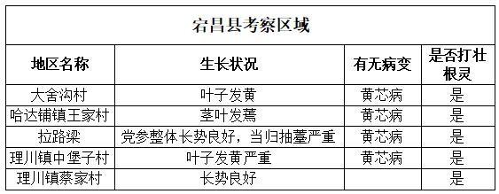 宕昌县考察区域