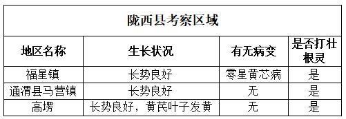 陇西县考察区域