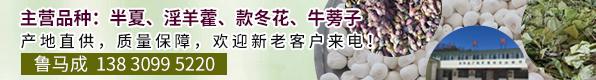PC首页A4-3-鲁马成