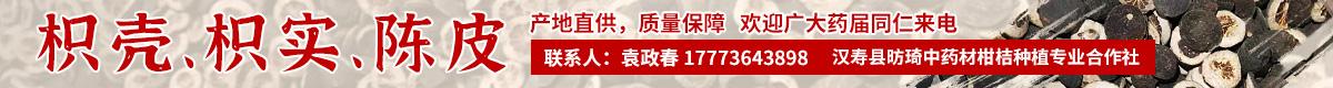 PC供应列表顶部通栏-陈皮